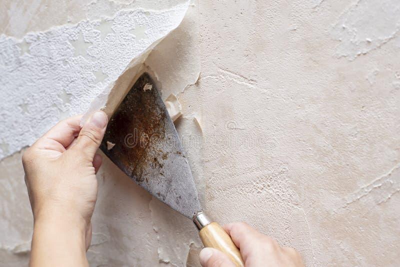 去除老墙纸的手在小铲帮助下在t期间 免版税库存图片