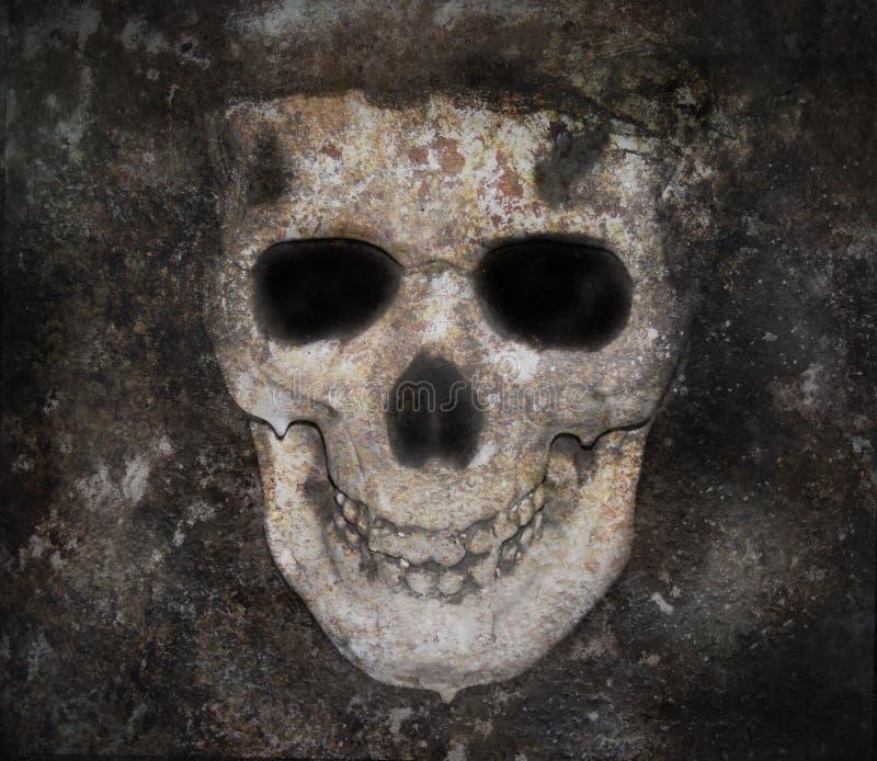 去骨黑暗的表面可怕头骨 库存照片