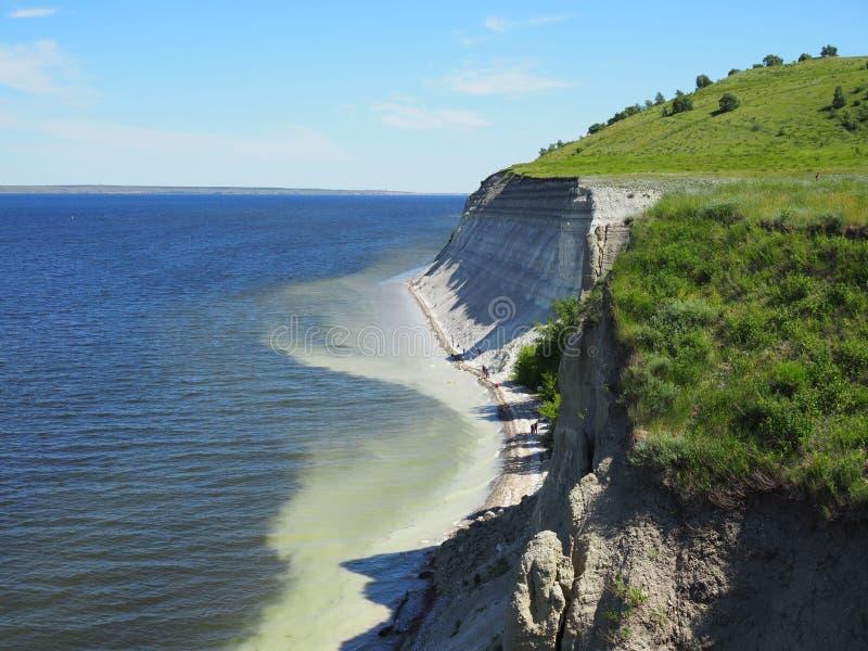 参与沿岩石海岸的无用单元收集人沾染与塑料废保存的植物群和动物区系 免版税库存图片