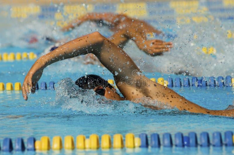 参加者在游泳种族 库存图片