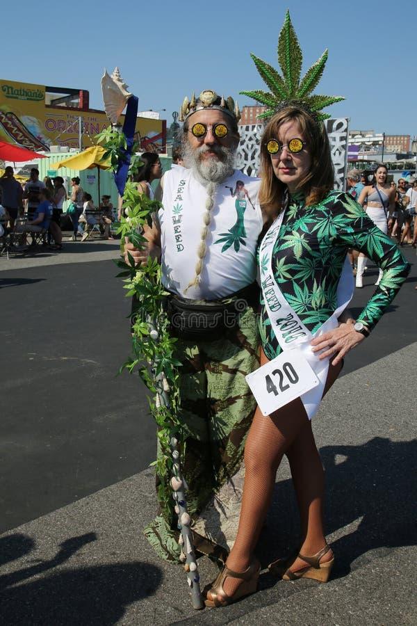 参加者在第34个每年美人鱼ParadeFreedom塔前进在更低的曼哈顿 免版税库存图片