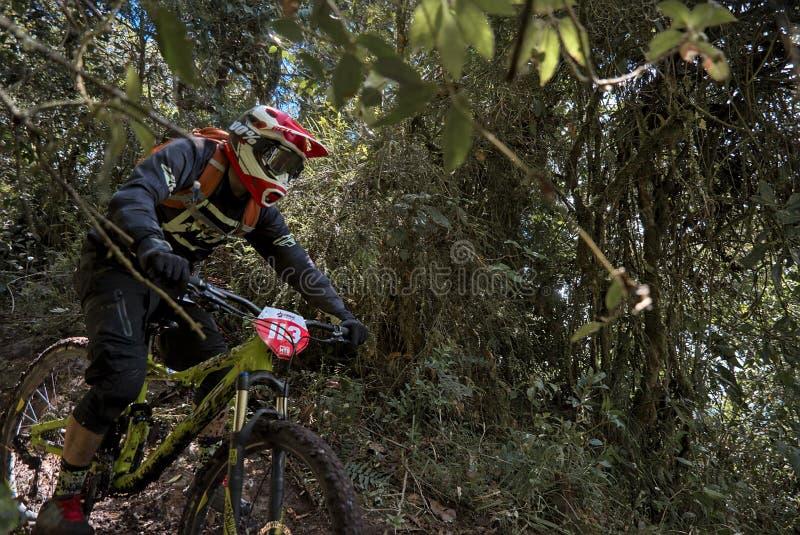 参加Nariño Enduro MTB杯的骑自行车者 图库摄影