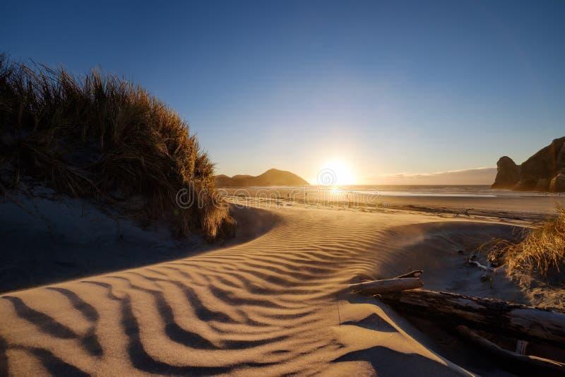 参观的一个美妙的地方在新西兰 通过步行灌木和沙丘访问的一个惊人的海滩 沙子有重复 库存图片