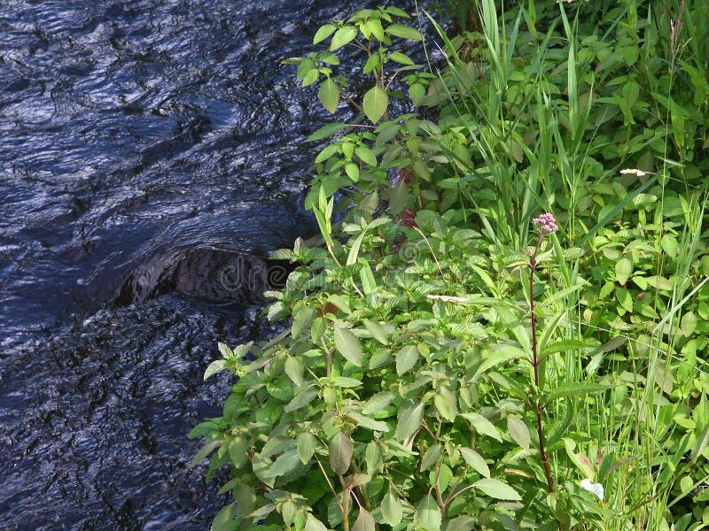 叉子蒙特利尔河西方威斯康辛 库存图片