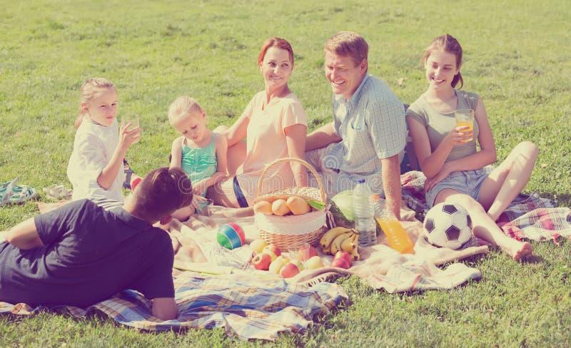 友好的大六口之家有在绿色草坪的野餐在公园 免版税库存照片