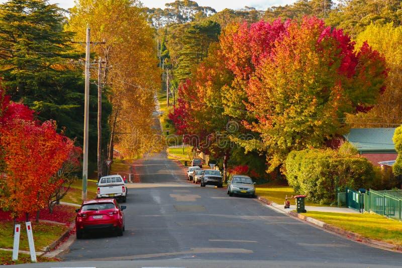 双方是红有叶的高速公路 库存照片