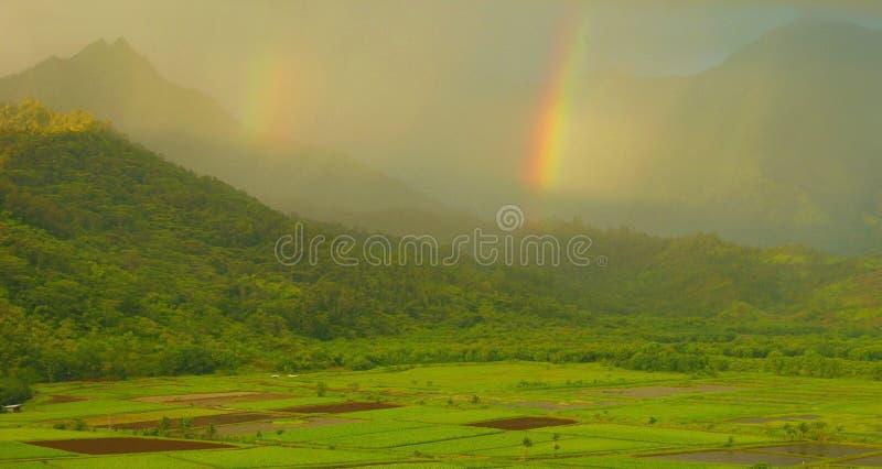 双考艾岛彩虹 库存图片