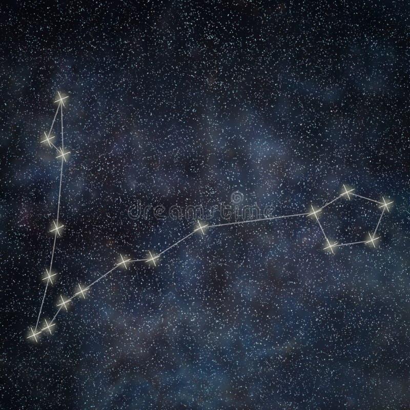 双鱼座黄道头像带标志双鱼座星座a黄道双子座男QQ星座图片