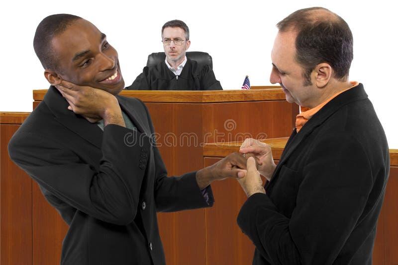 反同性婚姻法官 免版税库存照片