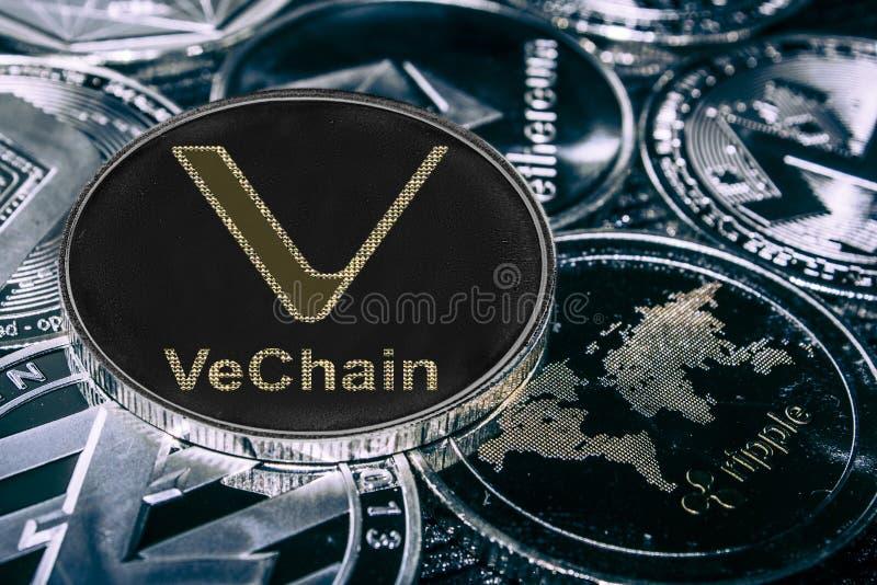 反对主要alitcoins的硬币cryptocurrency VeChain 狩医硬币 向量例证
