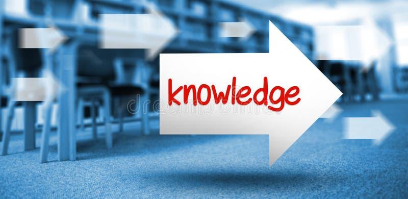 反对书的容量的知识在书架的在图书馆里 向量例证