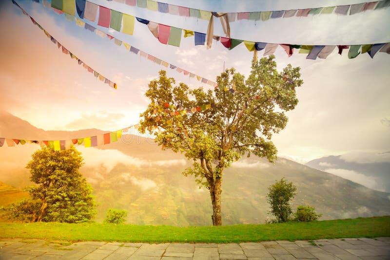 反对多云天空的佛教西藏祷告旗子 库存图片