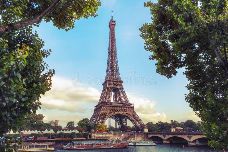 反对天空和树的艾菲尔铁塔 免版税库存图片