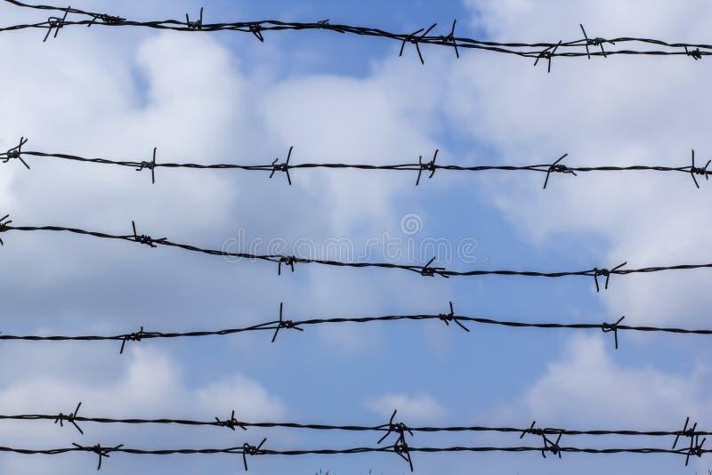 反对天空蔚蓝的铁丝网 天空蔚蓝用铁丝网盖 监狱和蓝色多云天空 图库摄影