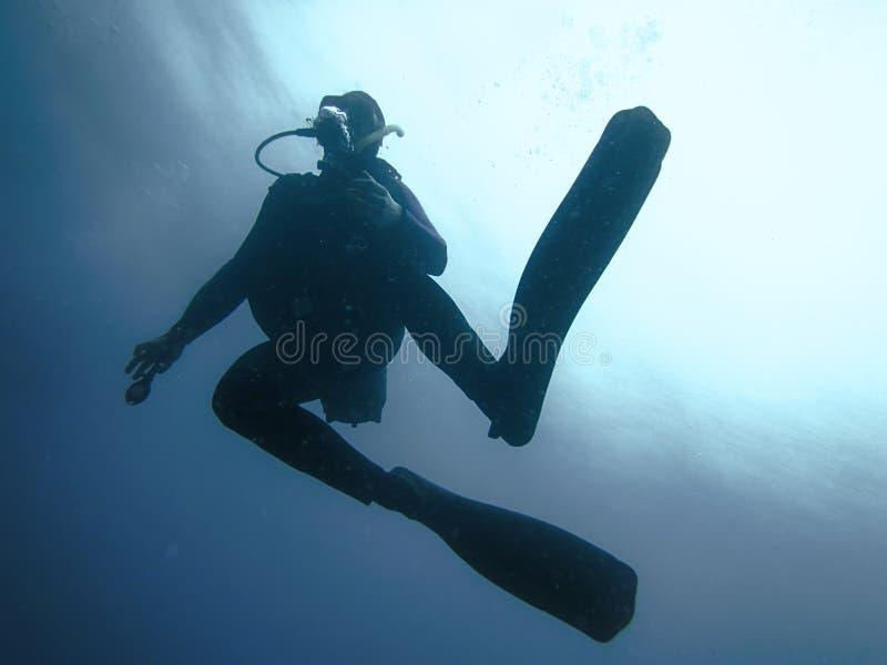 反对太阳的轻潜水员水下的剪影 图库摄影