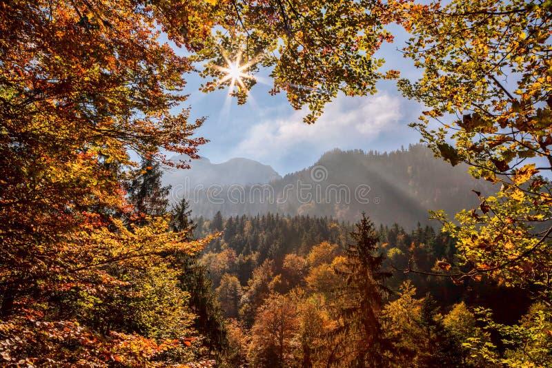 反对日落的巴伐利亚阿尔卑斯,德国 图库摄影