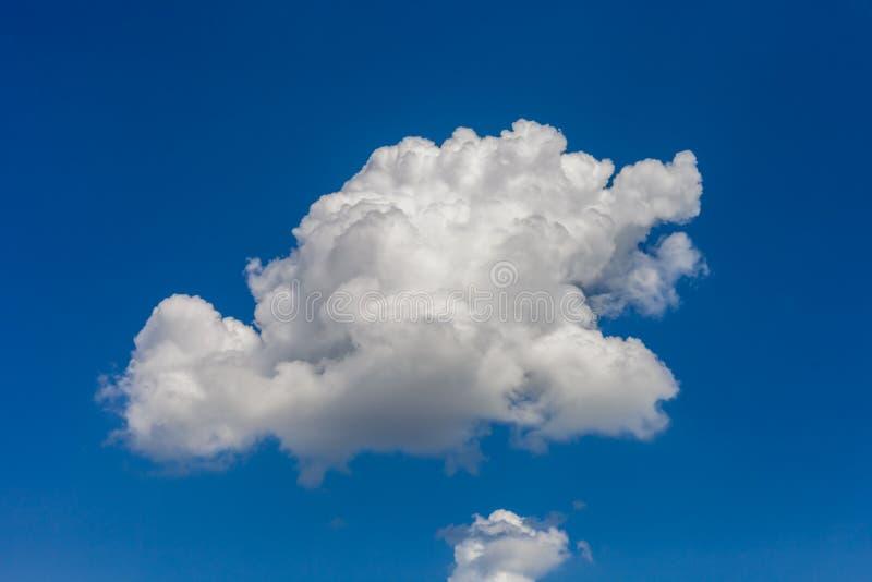 反对明亮的蓝天的积云 免版税库存照片