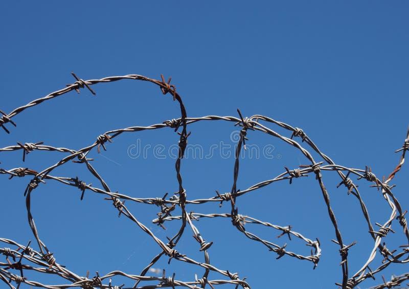反对海岸线天空蔚蓝的卷起的扭转的锋利的铁丝网 免版税库存照片