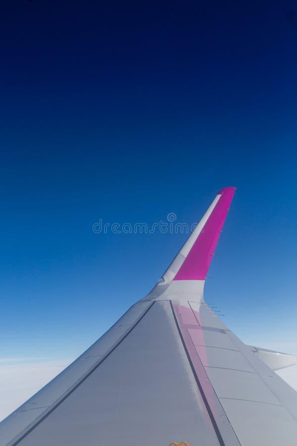 反对清楚的蓝天的飞机翼 库存图片