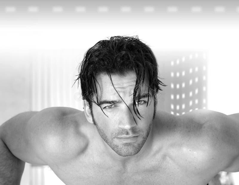 性感的男性模型 免版税库存照片