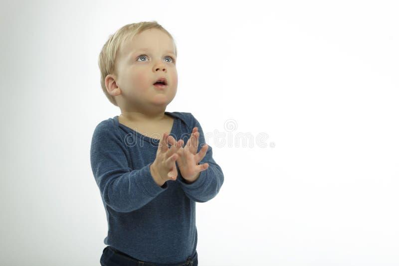 反对白色背景的可爱的小男孩,查寻,演播室射击,祈祷的姿势 ???? 库存图片