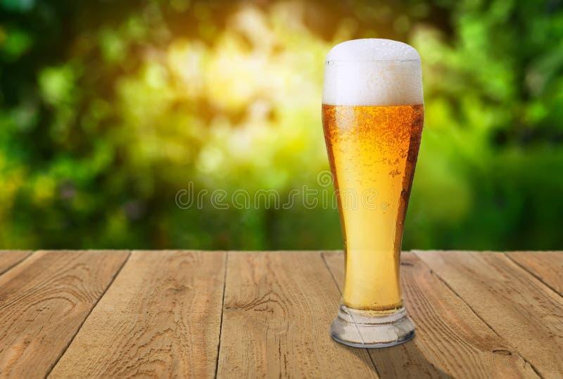 反对绿色被弄脏的背景的啤酒 库存图片