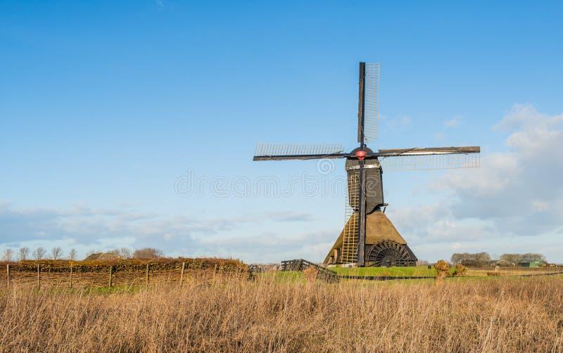 反对蓝天的荷兰开拓地磨房. 天空, 户外.