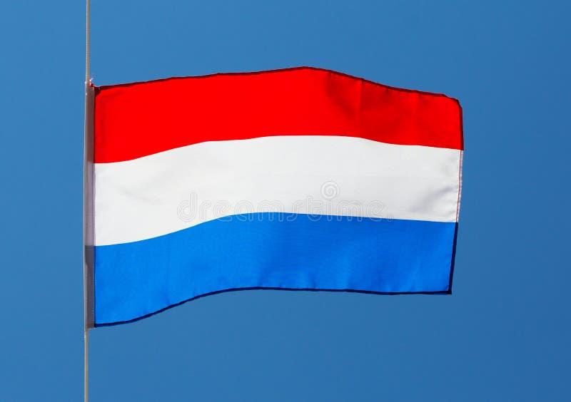 反对蓝天的荷兰旗子 库存照片