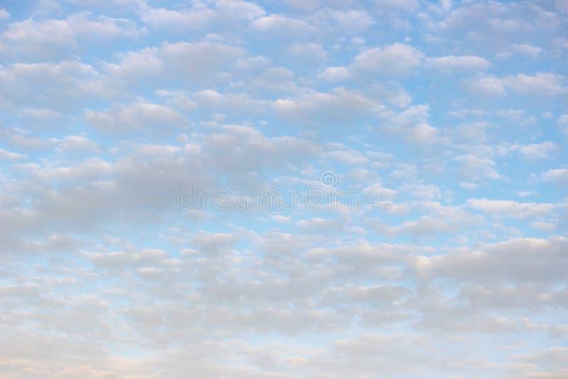 反对蓝天的鳍类的小白色云彩在一个晴朗的夏日 库存图片