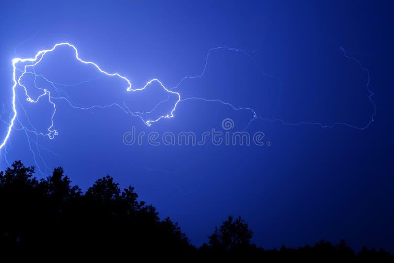 反对蓝色夜空的闪电在树上 图库摄影