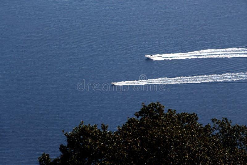 反对蓝色海和树的两艘汽艇 免版税库存图片
