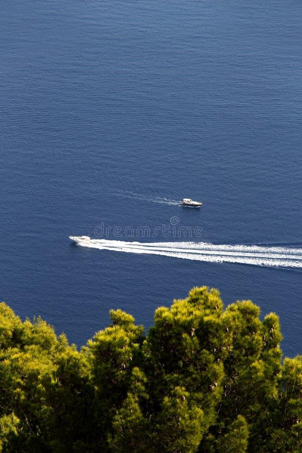 反对蓝色海和树的两艘汽艇 库存照片