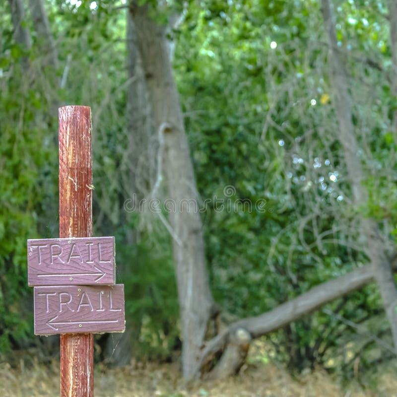 反对豪华的树的定向足迹标志在普若佛 库存图片