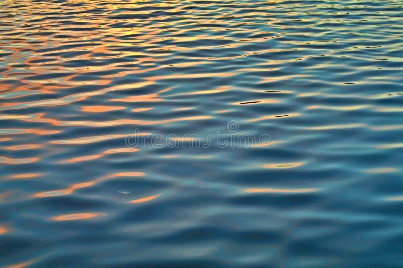 反射和波纹在水 免版税图库摄影