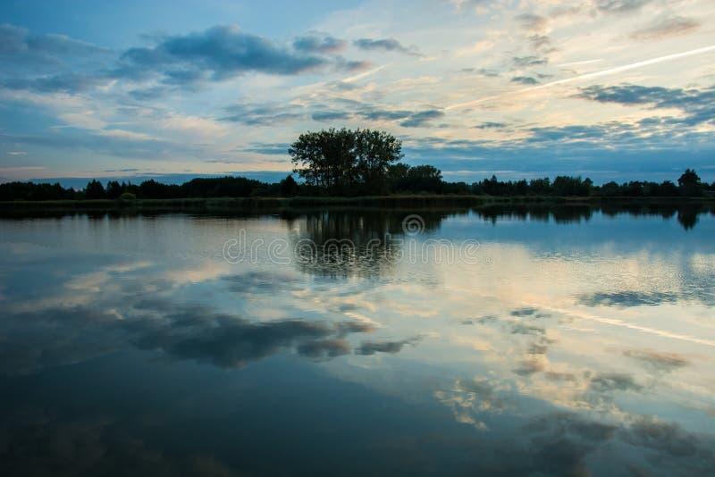 反射在一个镇静湖、天际和一个小组的水的中云彩在岸的树 免版税库存图片