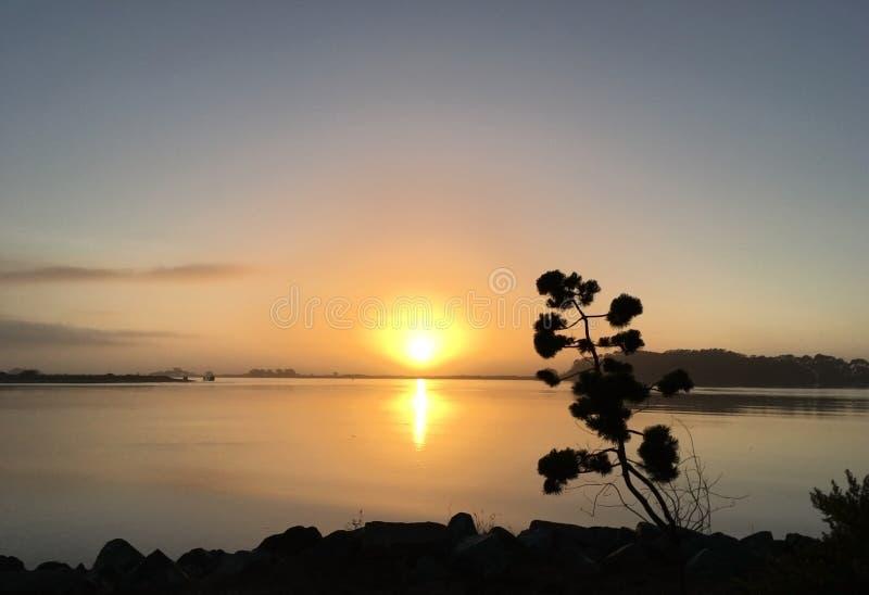 反射在北太平洋的日落在尤里卡加利福尼亚 免版税库存图片