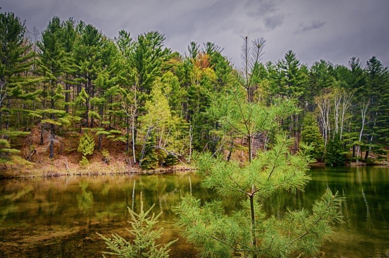 反射在北安大略的镇静湖,加拿大的森林 免版税库存照片
