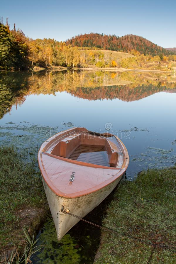 反射在水中的秋叶 免版税图库摄影