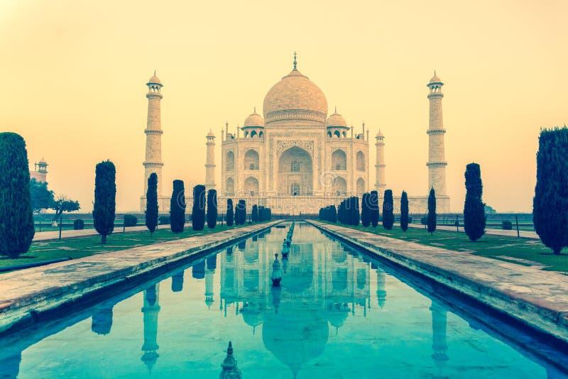 反射在水池的水的中泰姬陵纪念碑在阿格拉印度 免版税库存照片