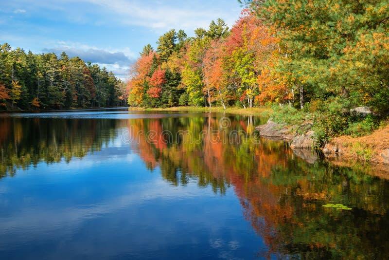 反射在池塘在晴朗的秋天天 库存照片