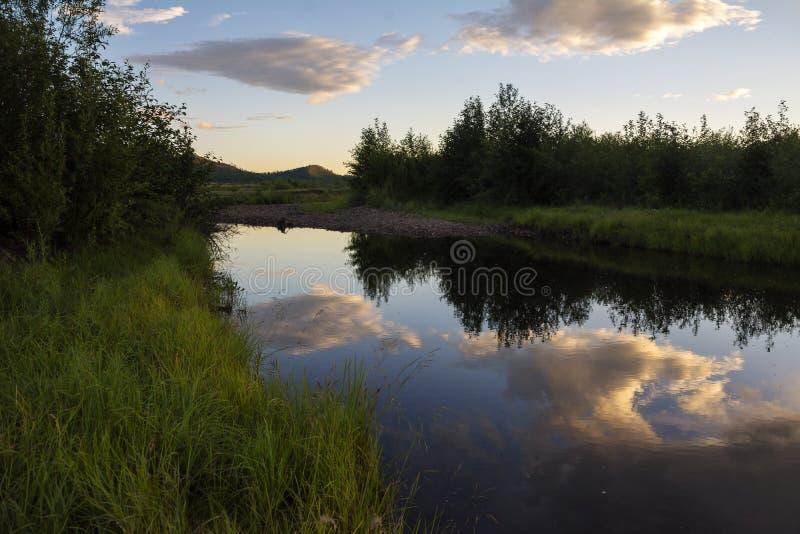 反射在河 春天或夏天风景河覆盖蓝天绿色树 库存照片
