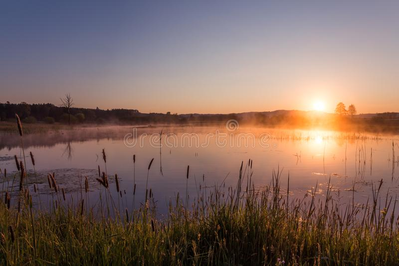 反射在湖的有薄雾的金黄日出在春天 免版税库存图片