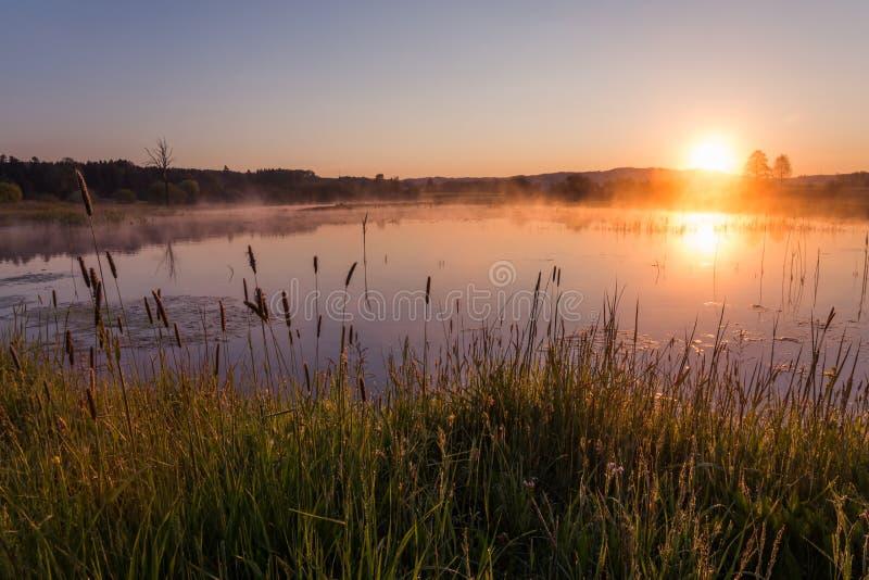 反射在湖的有薄雾的金黄日出在春天 图库摄影