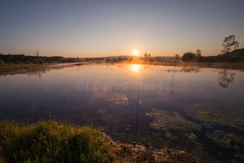 反射在湖的有薄雾的金黄日出在春天 免版税库存照片