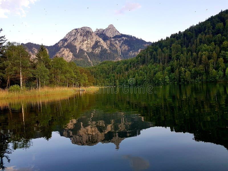 反射在湖 免版税库存照片