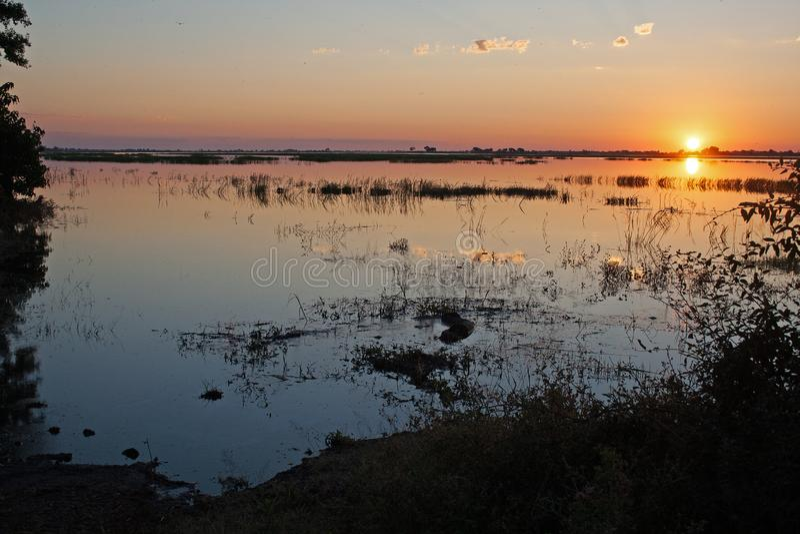 反射在CHOBE河的日落颜色 图库摄影
