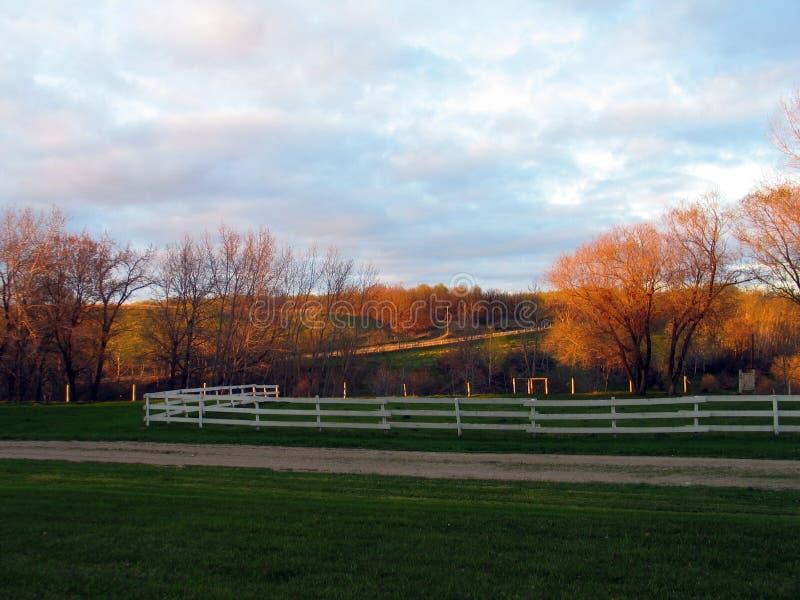 反射树的晚天太阳在平安的仓前空地 免版税图库摄影
