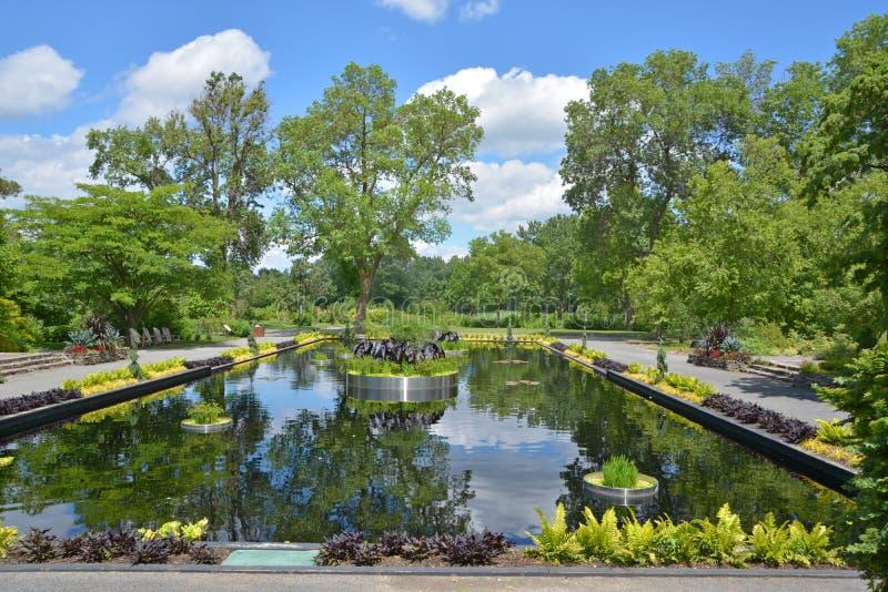 反射的池塘 库存图片