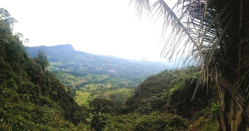 反射美好的哥伦比亚的自然的印象深刻的风景 库存图片
