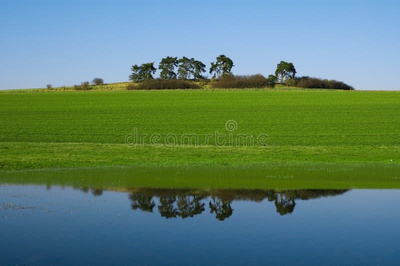 反映水 库存图片